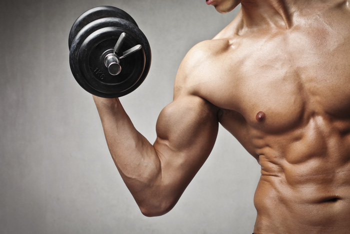 muscle buliding