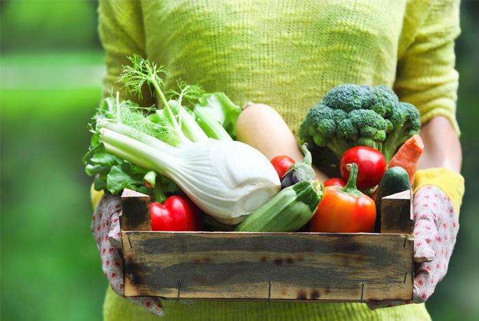 DASH diet foods basket