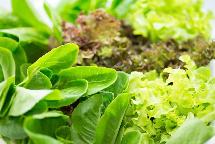 veggies green