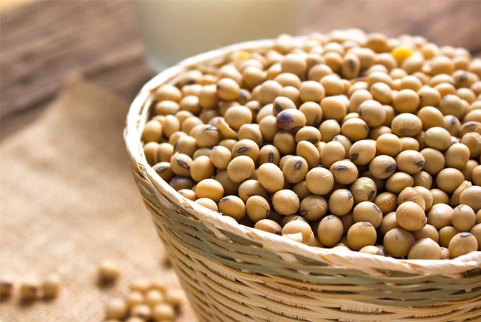 common GMO foods