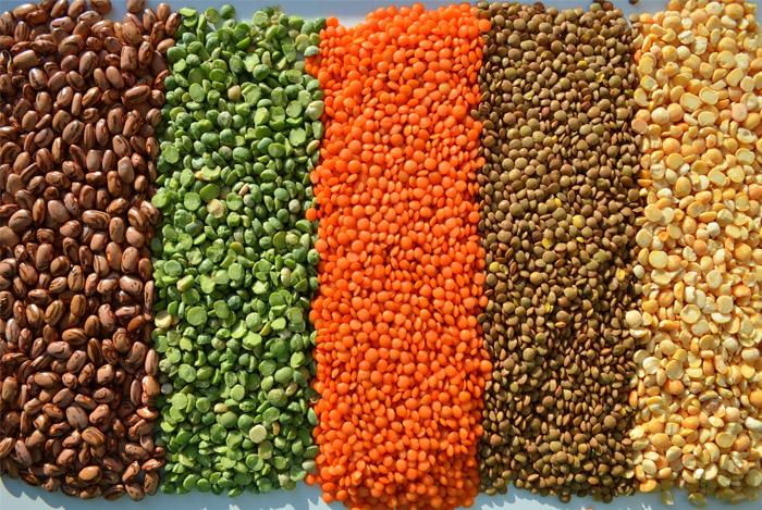 lentils beans