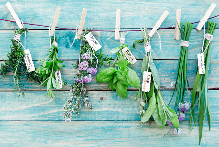 10 Herbs With Secret Benefits for Your Brain