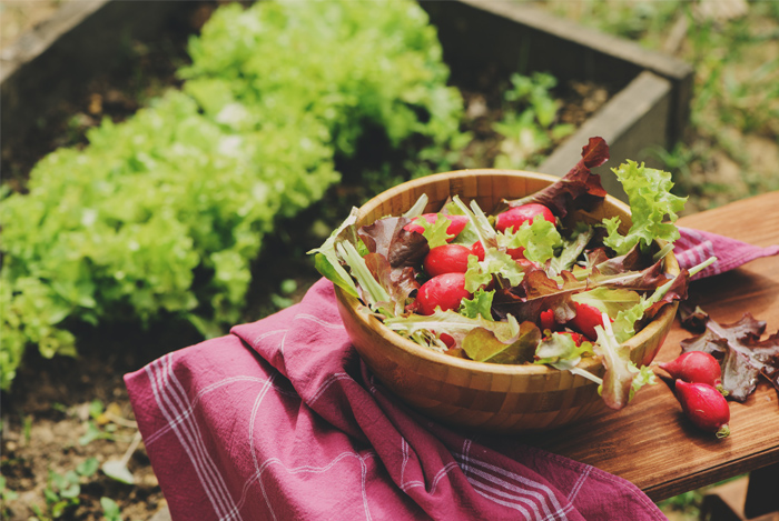 How to Transition Into a Plant-Based Diet Slowly and Effectively